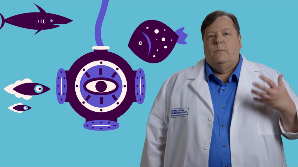 Ask a Scientist: Sharks and Barks (Explainer Video)