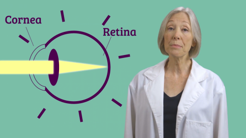 Ask a Scientist: Nearsighted or Farsighted Educational Video